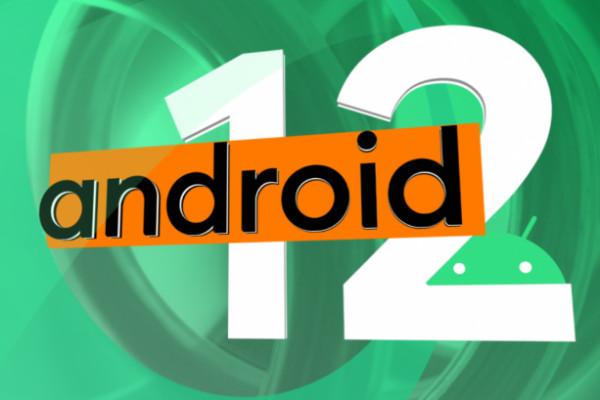 Опубликована Android 12 Developer Preview 1: что нового, когда ждать стабильную версию и кто может установить